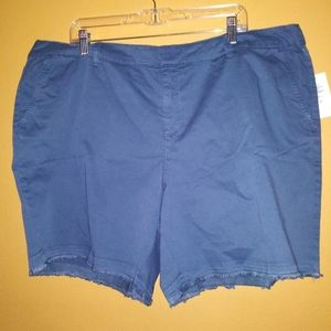 NWT Style&Co blue shorts